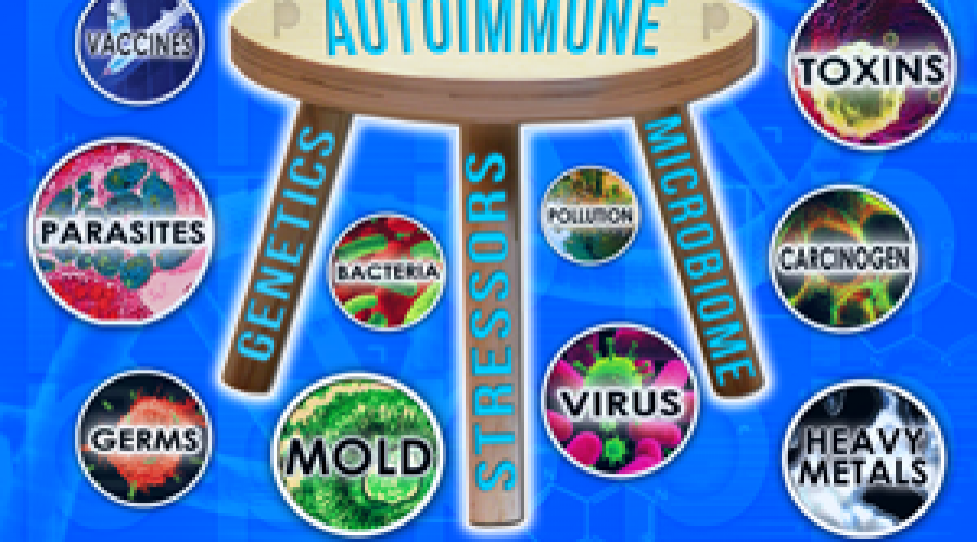 "The  Cellular Autoimmune Answer:  ""Three-Legged Stool"""